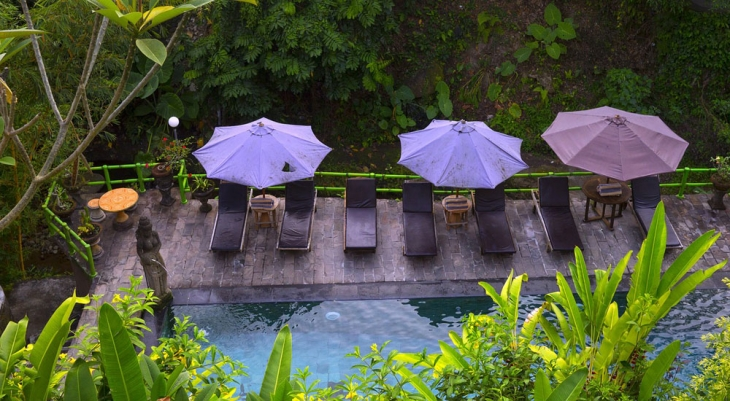 Bali Spa and Dinner Tour