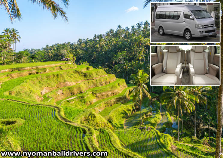 Recommended Taxi Service from Ngurah Rai International Airport to Ubud